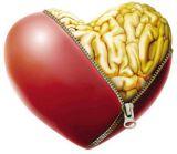 Inteligência Emocional na Educacão
