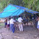 Módulo de estrutura icosaédrica de bambu